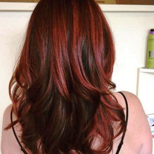 Chestnut Layered and Winged Hair