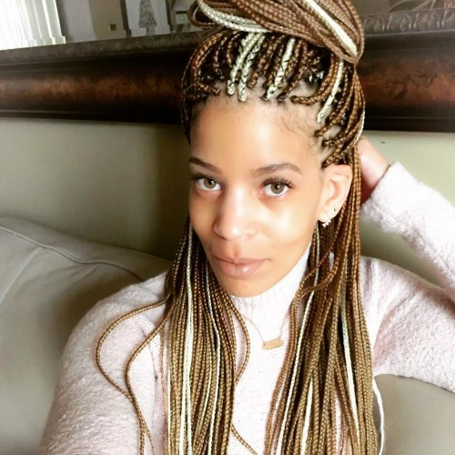 Box Braids with Copper and Blonde Color